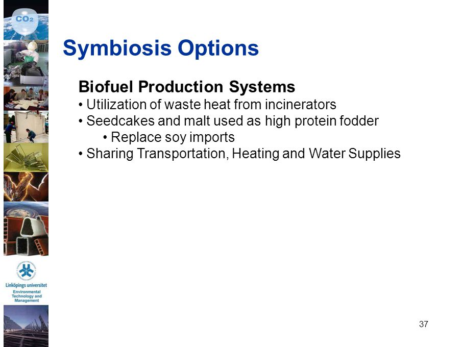 Symbiosis Options Biofuel Production Systems