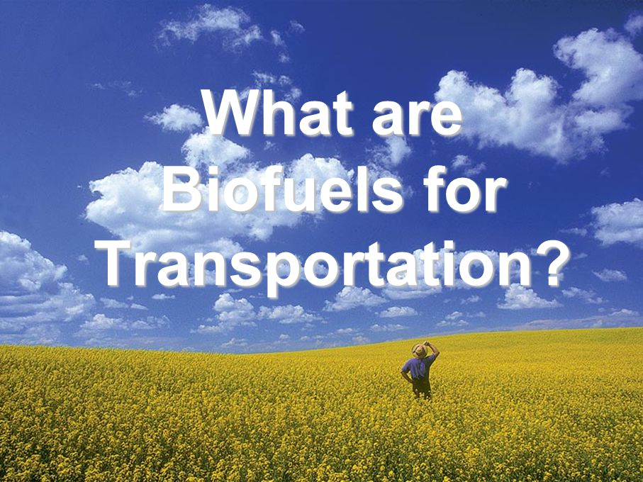 What are Biofuels for Transportation
