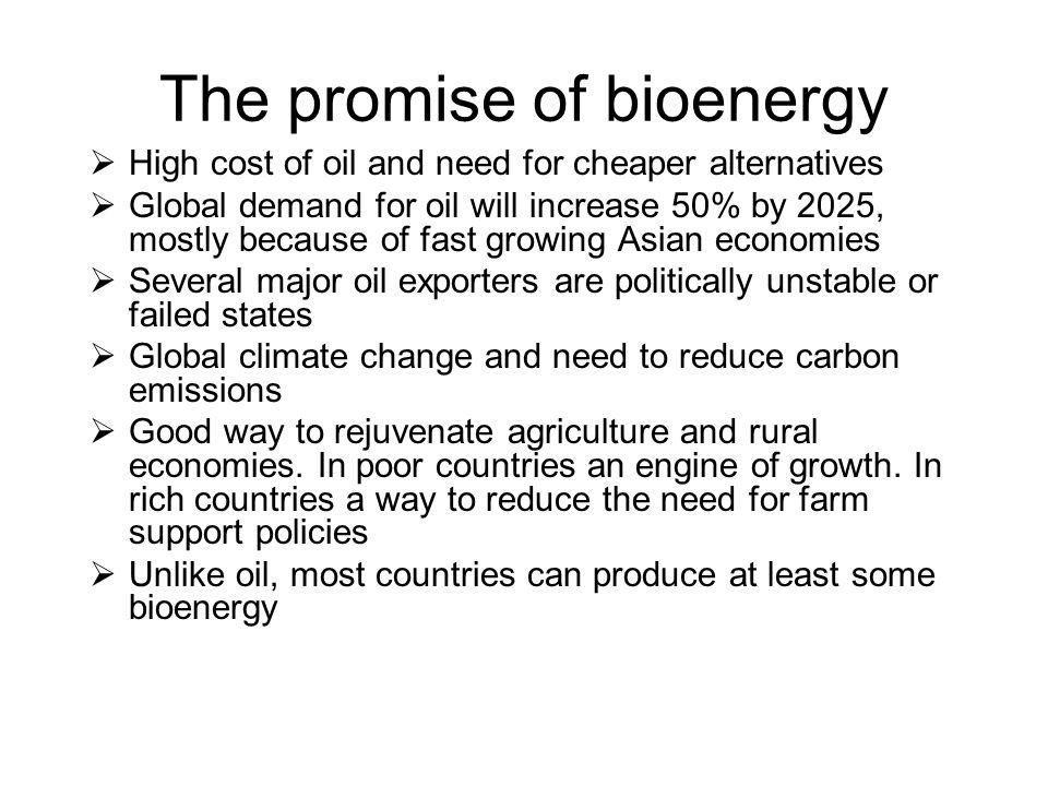 The promise of bioenergy