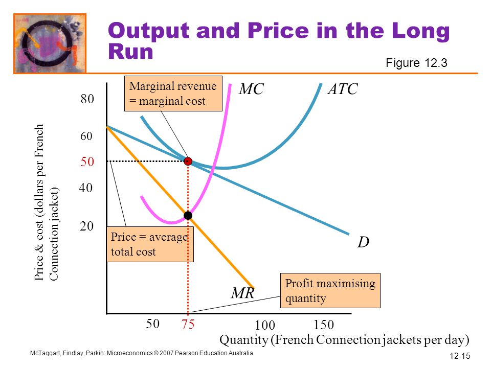 Output and Price in the Long Run