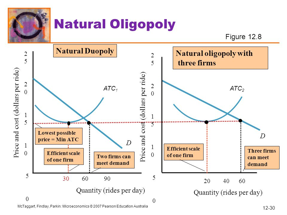 Natural Oligopoly Natural Duopoly Natural oligopoly with three firms