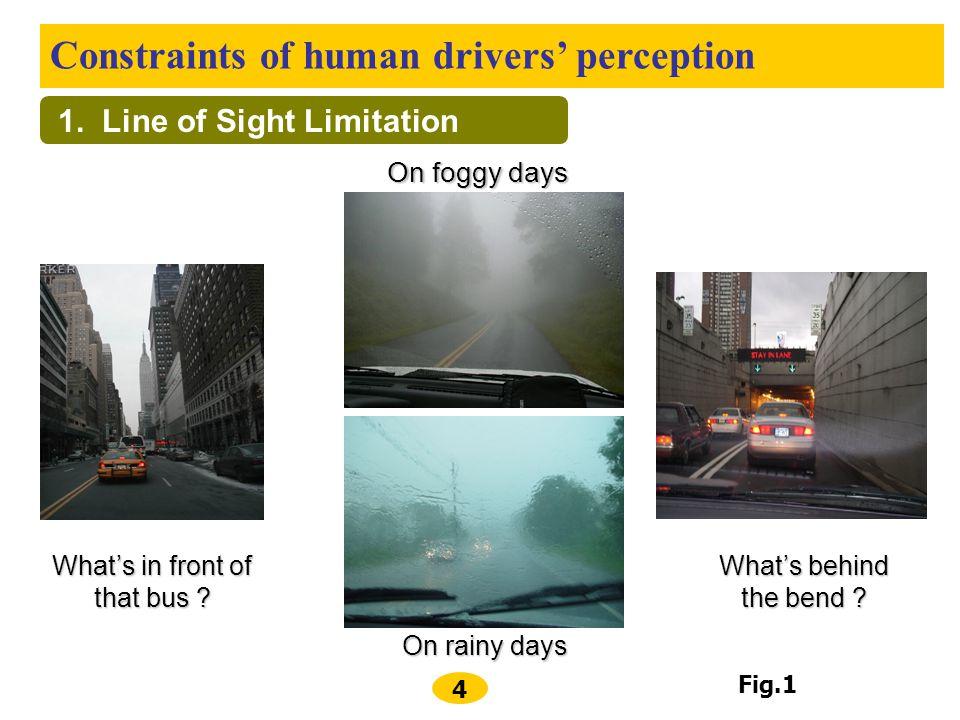 1. Line of Sight Limitation