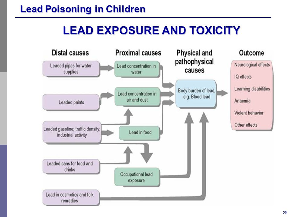 LEAD EXPOSURE AND TOXICITY