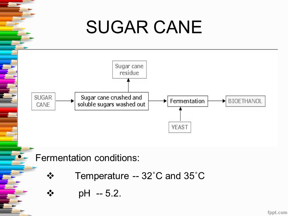 SUGAR CANE Fermentation conditions: Temperature -- 32˚C and 35˚C