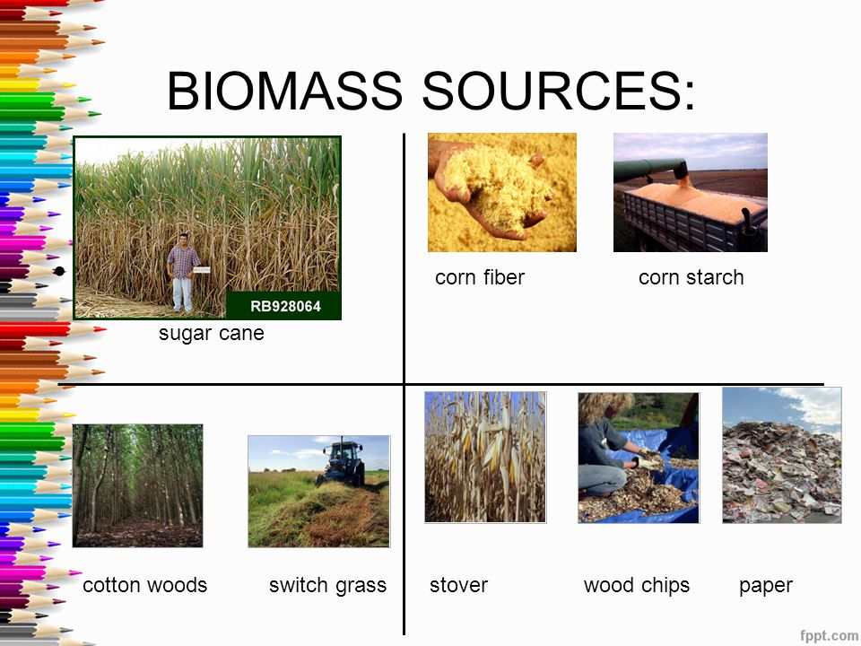 BIOMASS SOURCES: corn fiber corn starch sugar cane