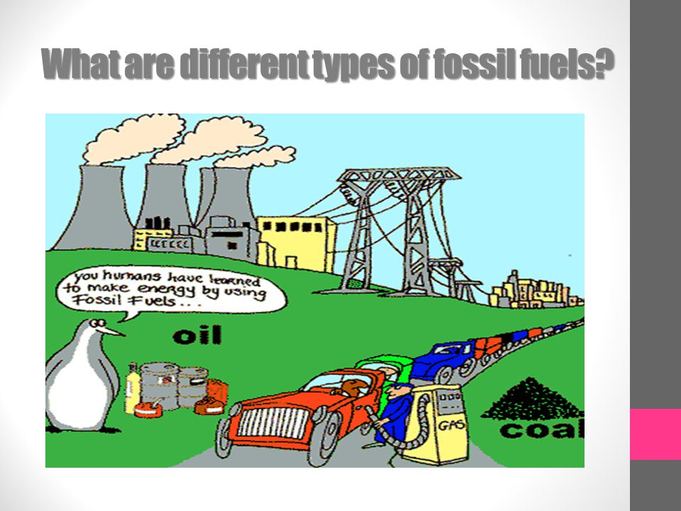 What are different types of fossil fuels
