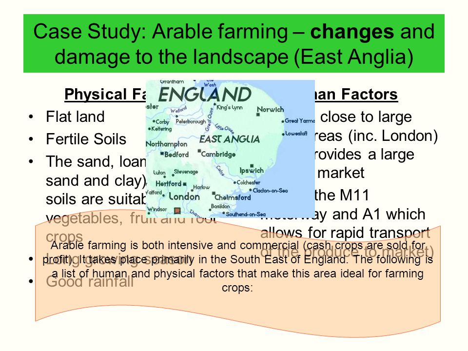 Case Study: Arable farming – changes and damage to the landscape (East Anglia)