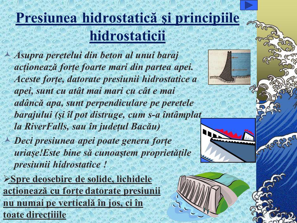 Presiunea hidrostatică şi principiile hidrostaticii
