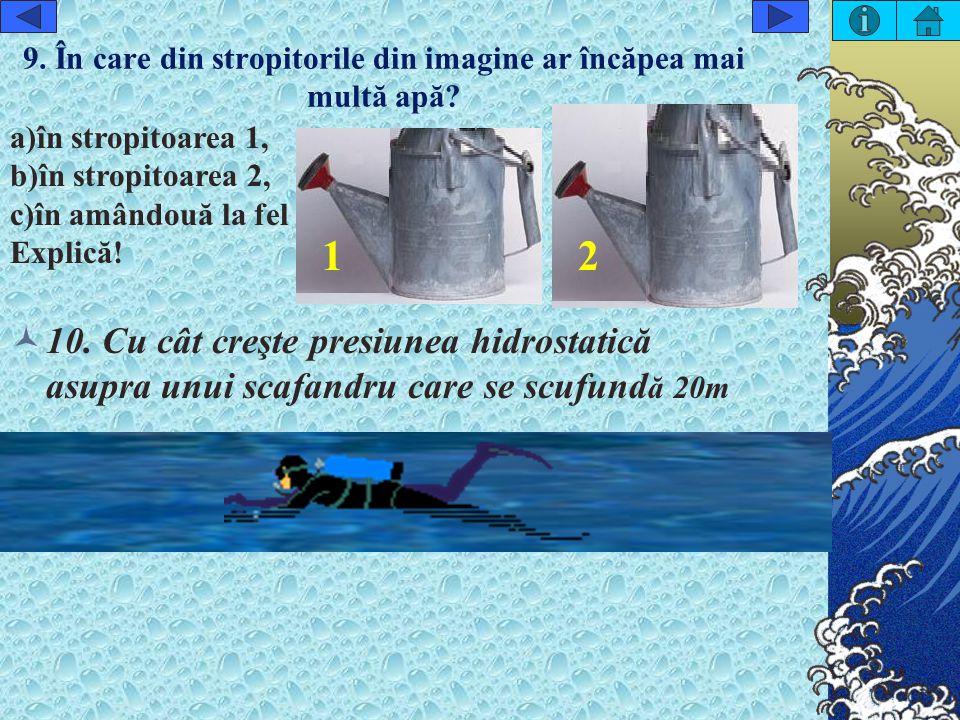 9. În care din stropitorile din imagine ar încăpea mai multă apă
