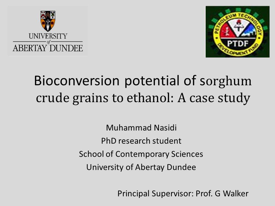 Bioconversion potential of sorghum crude grains to ethanol: A case study