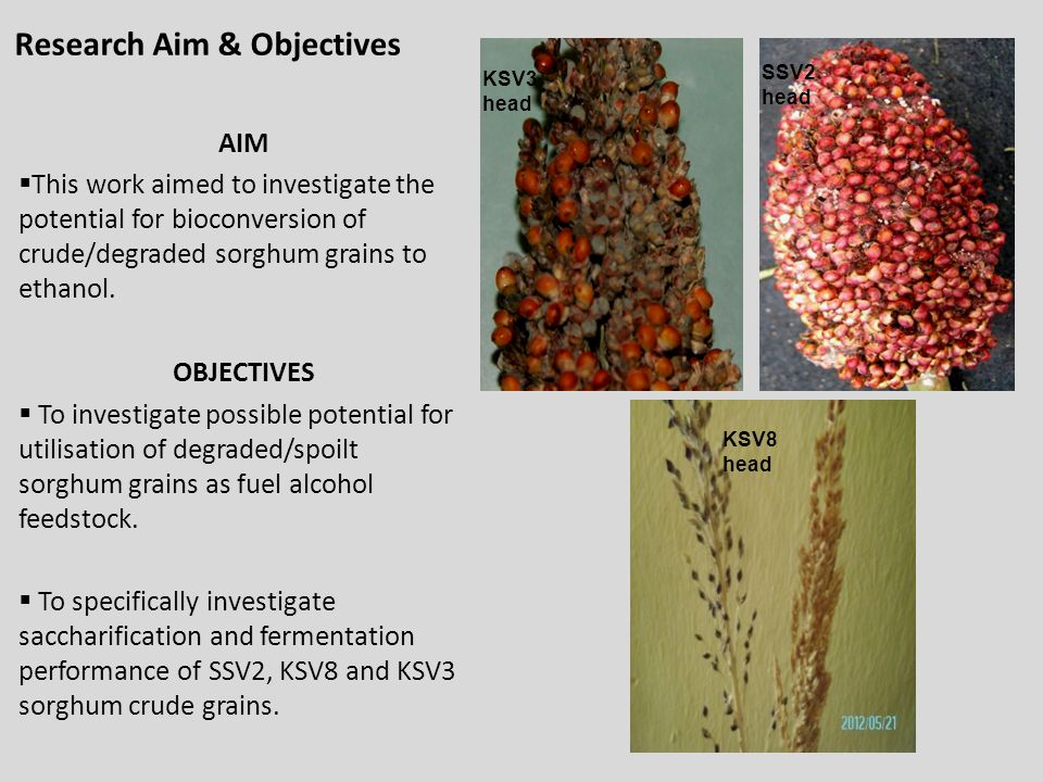 Research Aim & Objectives