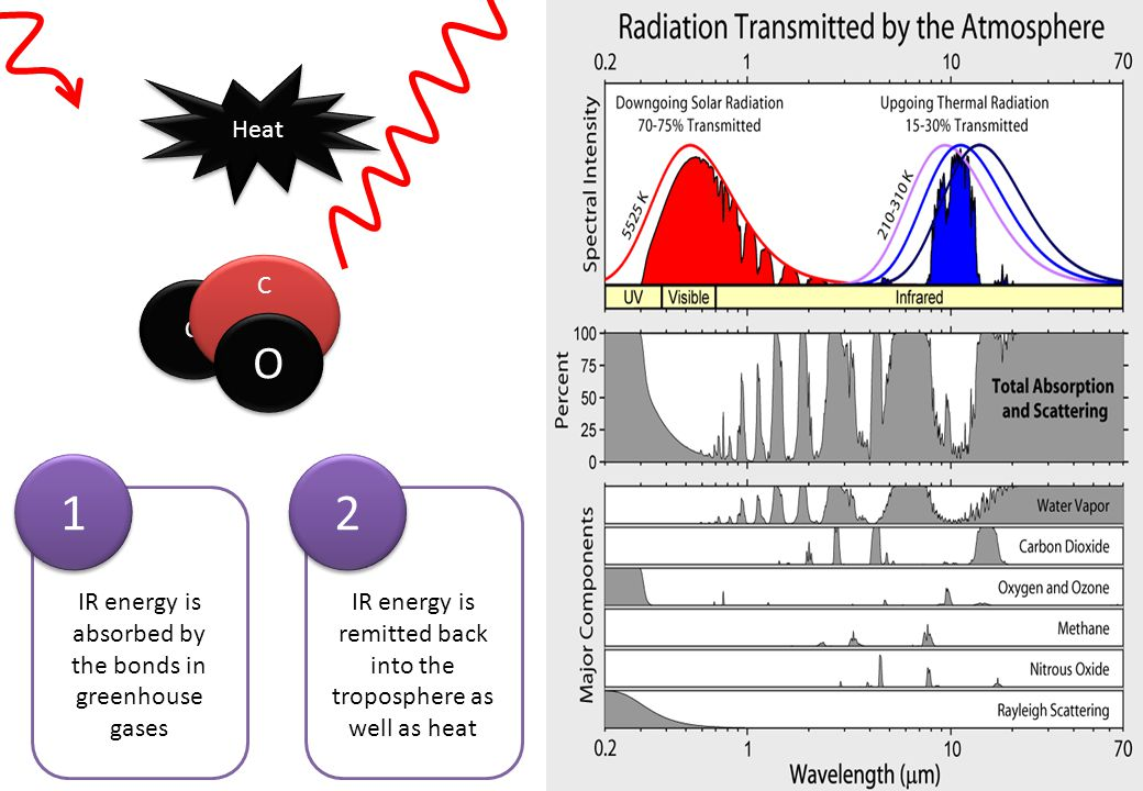 1 2 O Heat C O IR energy is absorbed by the bonds in greenhouse gases