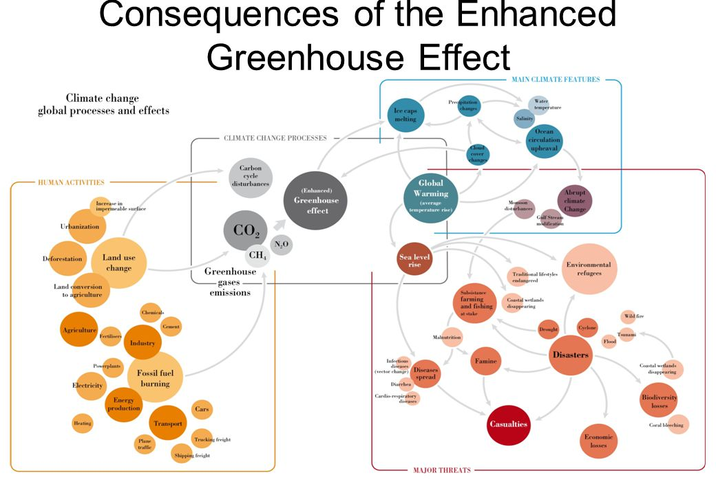 Consequences of the Enhanced Greenhouse Effect