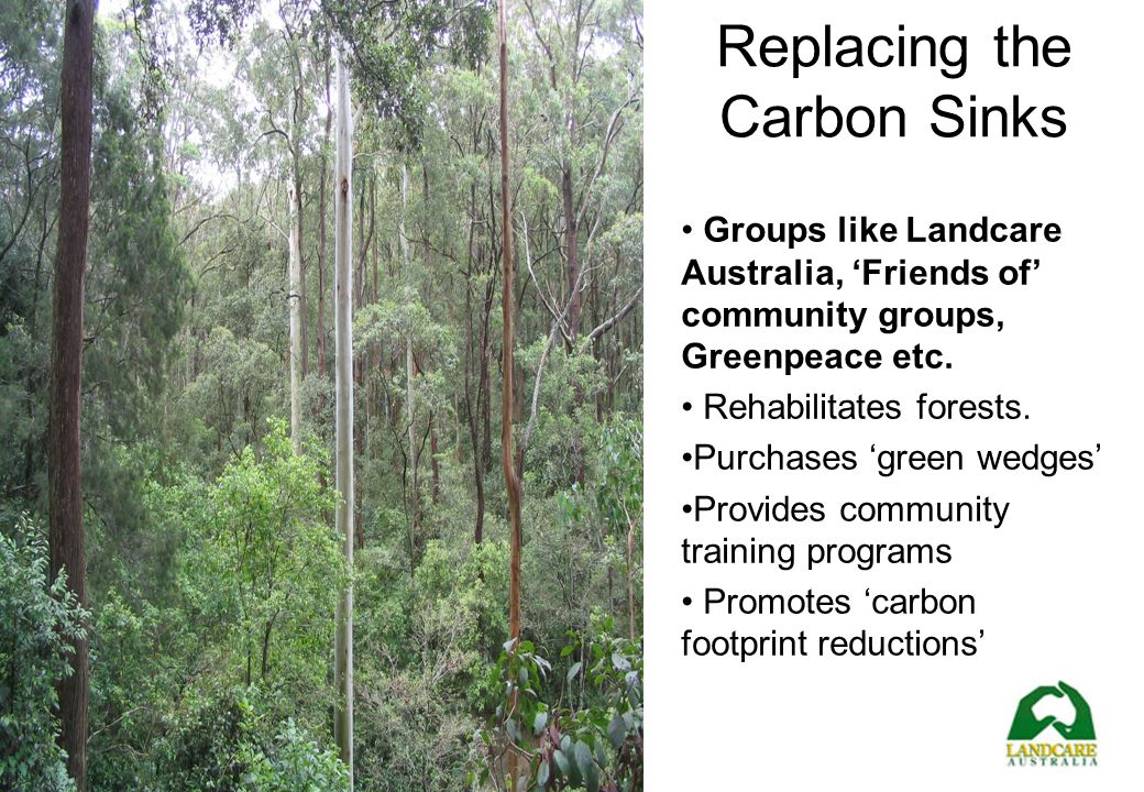 Replacing the Carbon Sinks
