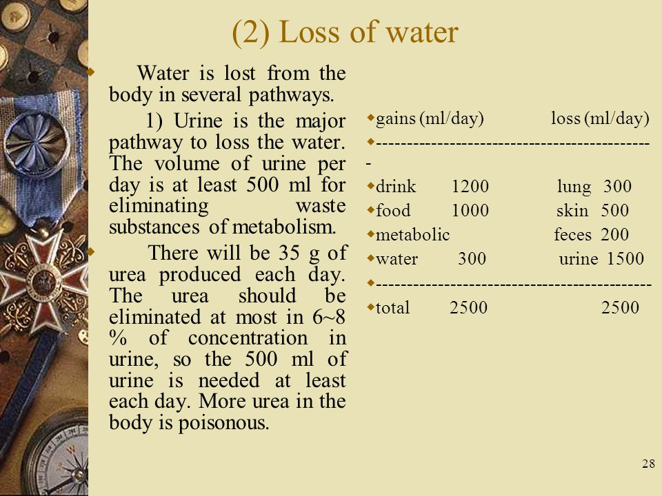 (2) Loss of water Water is lost from the body in several pathways.