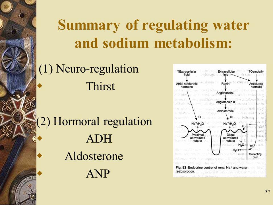 Summary of regulating water and sodium metabolism: