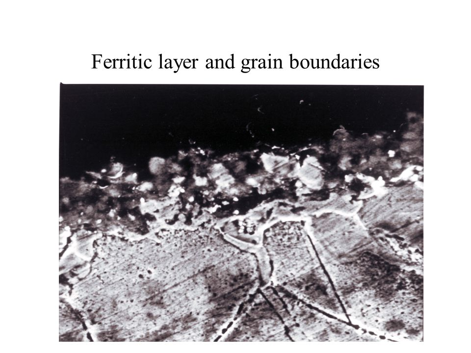 Ferritic layer and grain boundaries
