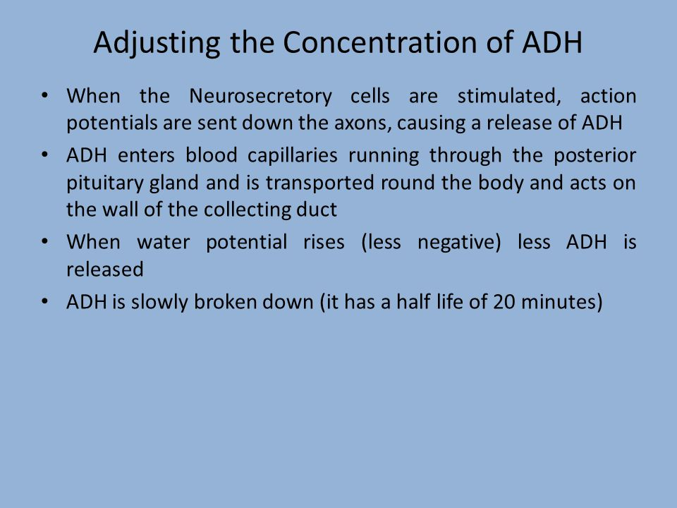 Adjusting the Concentration of ADH
