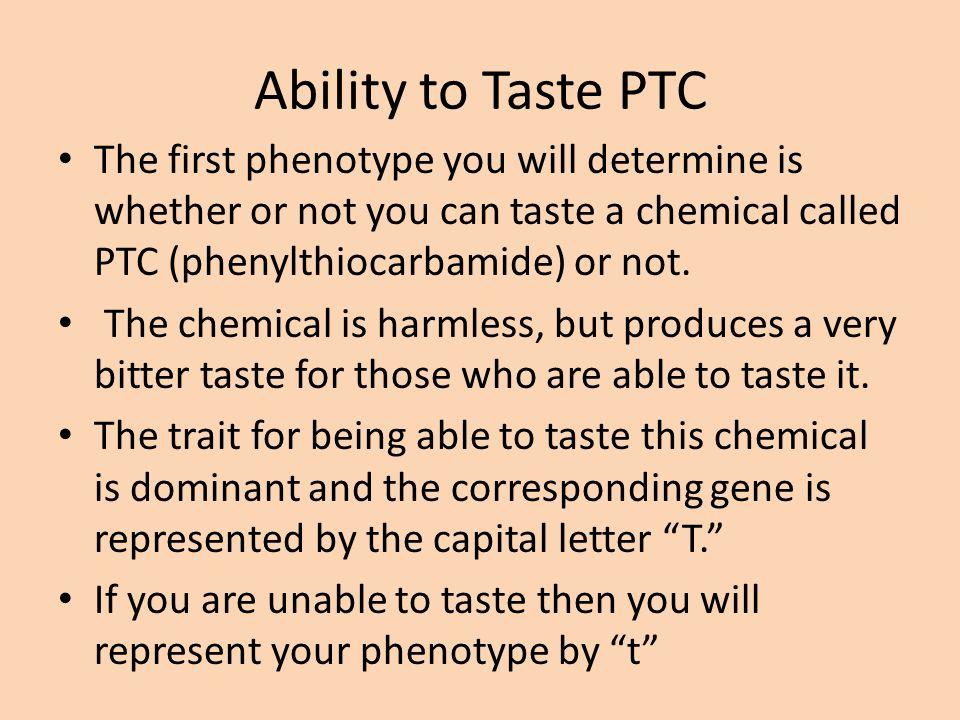 Ability to Taste PTC The first phenotype you will determine is whether or not you can taste a chemical called PTC (phenylthiocarbamide) or not.