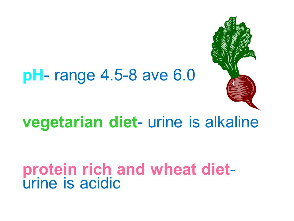 pH- range 4.5-8 ave 6.0 vegetarian diet- urine is alkaline.
