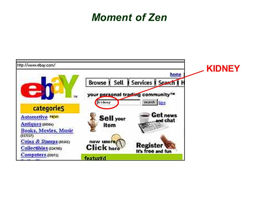 Moment of Zen KIDNEY