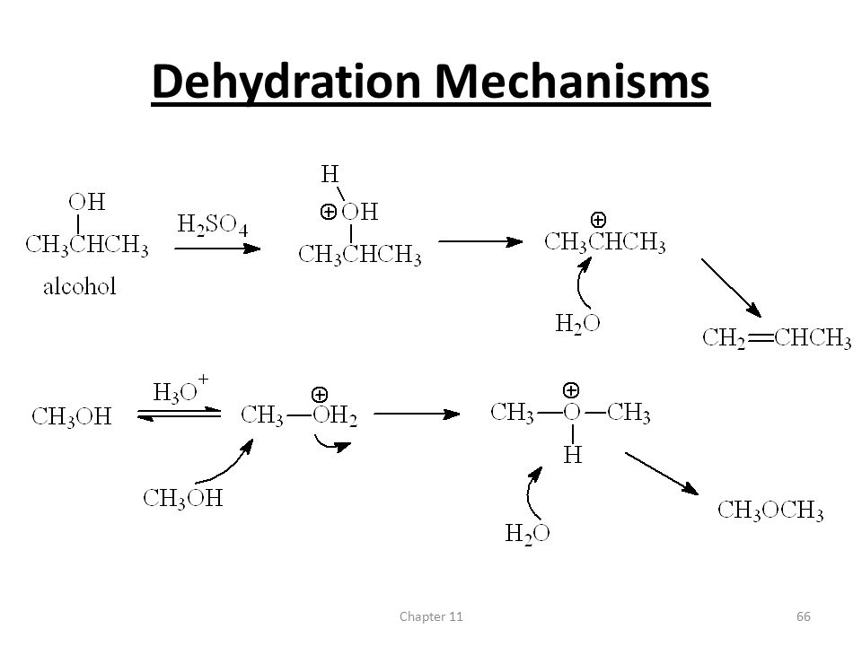 Dehydration Mechanisms
