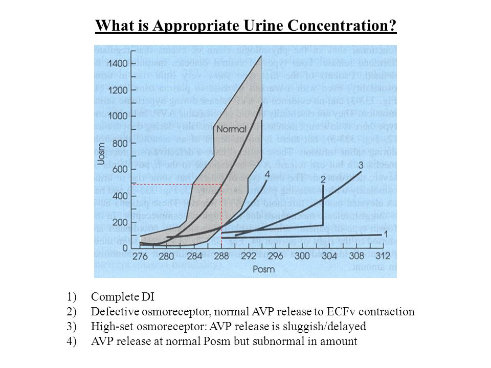 What is Appropriate Urine Concentration