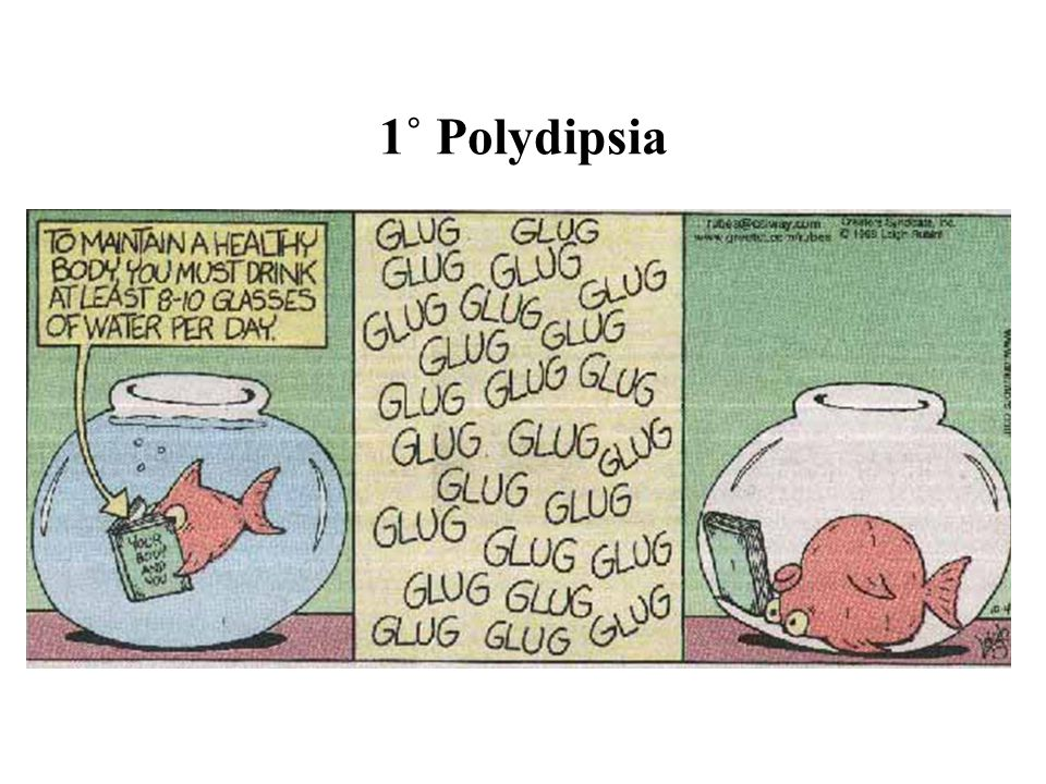 1˚ Polydipsia