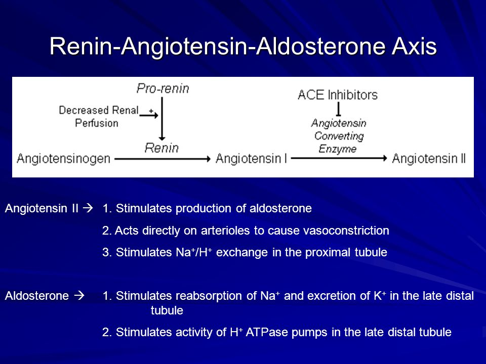 Renin-Angiotensin-Aldosterone Axis