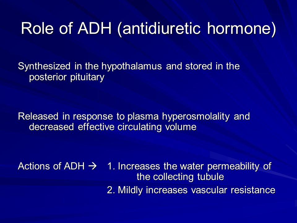Role of ADH (antidiuretic hormone)