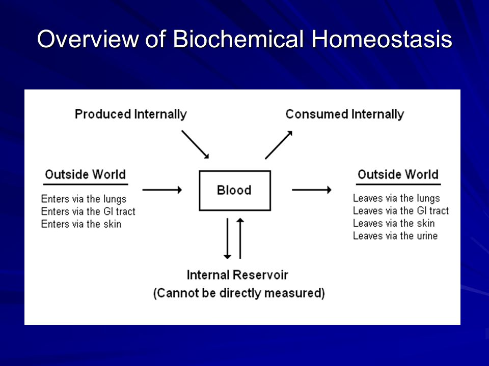 Overview of Biochemical Homeostasis