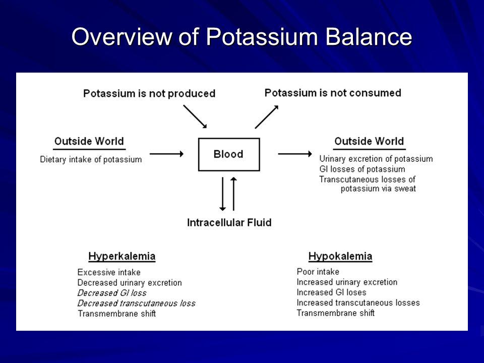 Overview of Potassium Balance