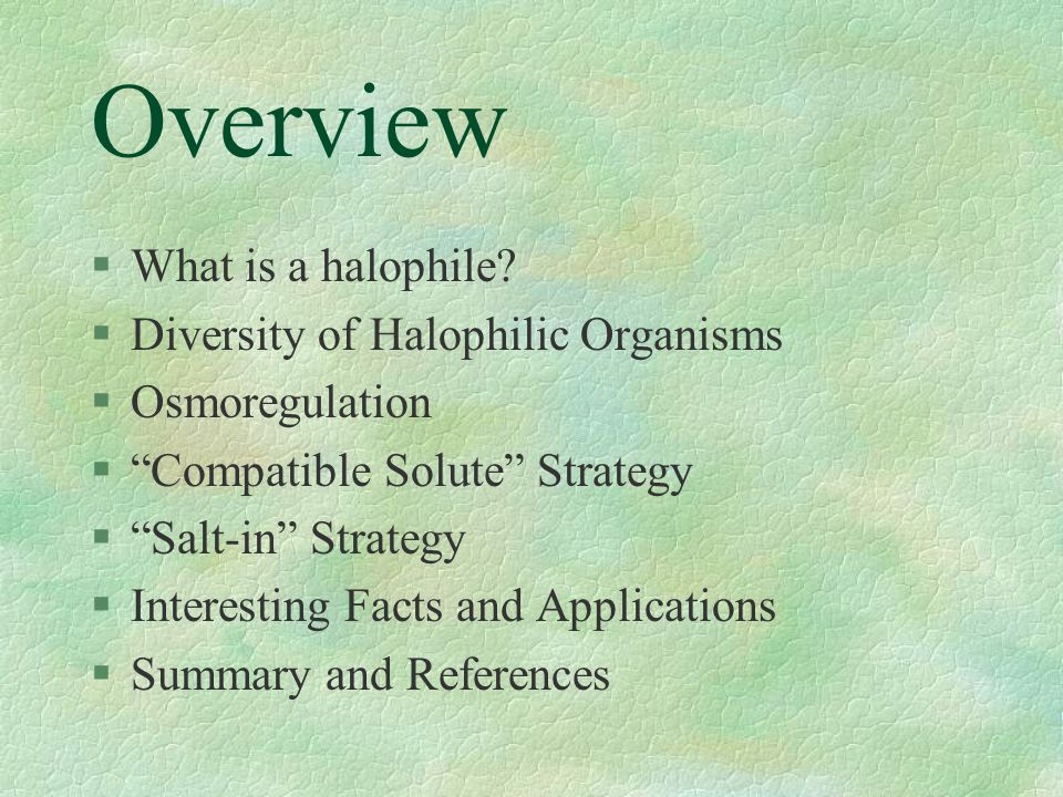 Overview What is a halophile Diversity of Halophilic Organisms