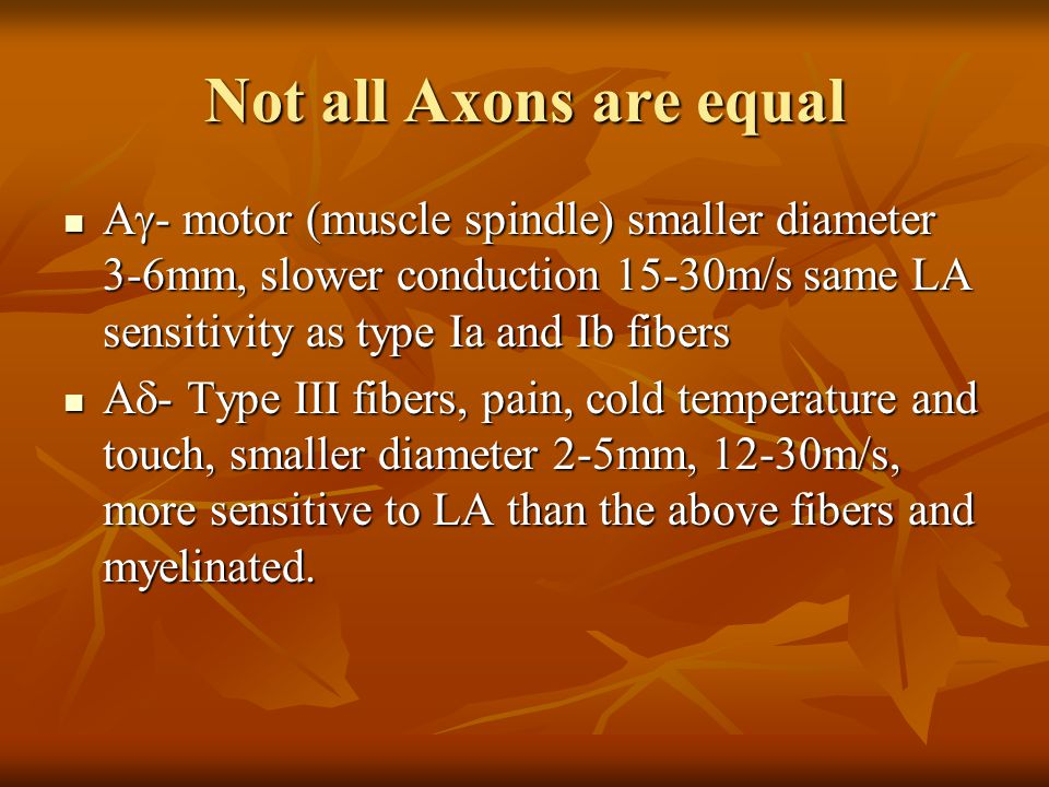 Not all Axons are equal Ag- motor (muscle spindle) smaller diameter 3-6mm, slower conduction 15-30m/s same LA sensitivity as type Ia and Ib fibers.