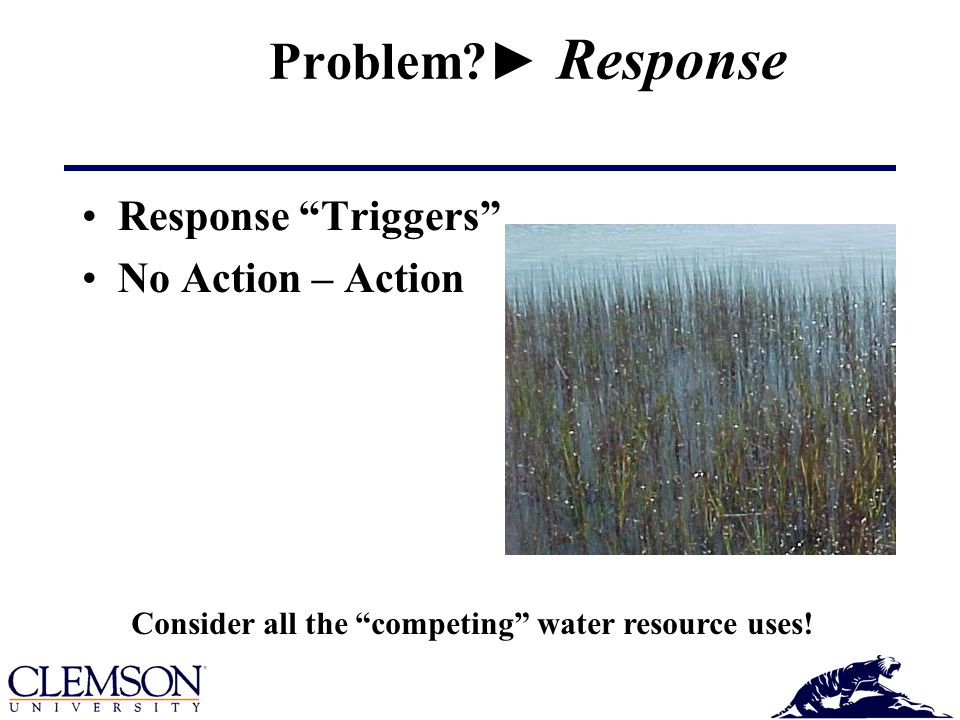 Problem ► Response Response Triggers No Action – Action