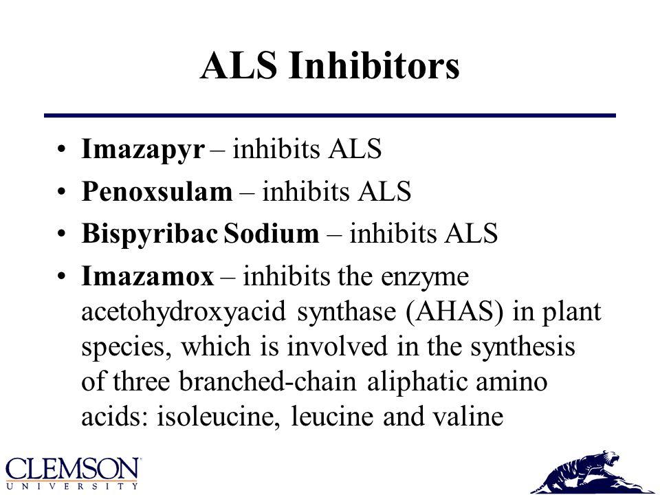 ALS Inhibitors Imazapyr – inhibits ALS Penoxsulam – inhibits ALS