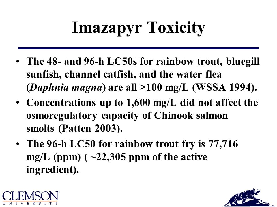 Imazapyr Toxicity