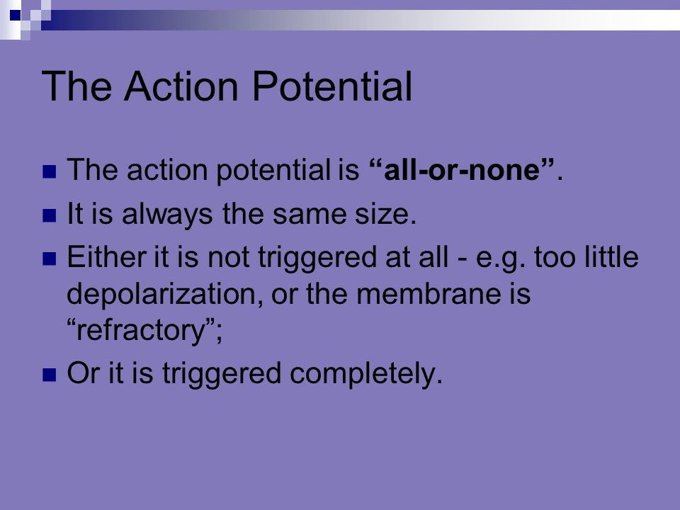 The Action Potential The action potential is all-or-none .