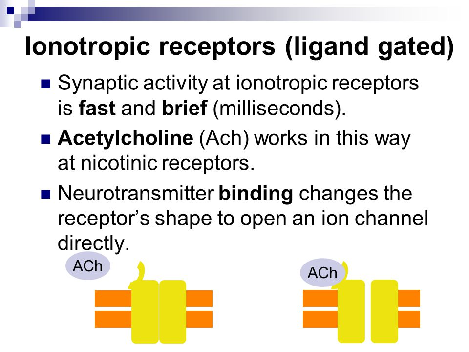 Ionotropic receptors (ligand gated)