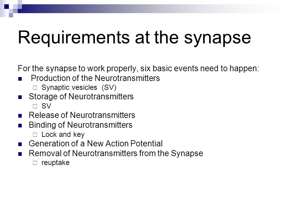 Requirements at the synapse