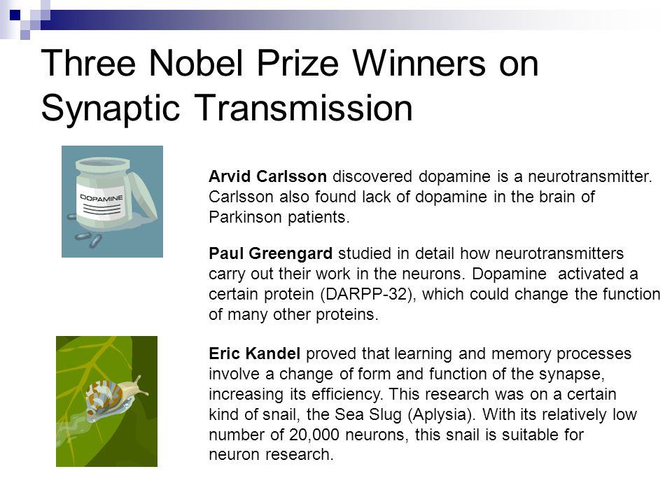 Three Nobel Prize Winners on Synaptic Transmission