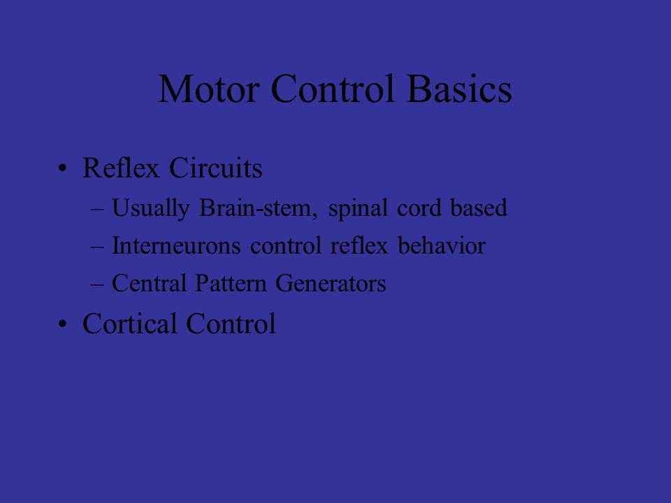 Motor Control Basics Reflex Circuits Cortical Control