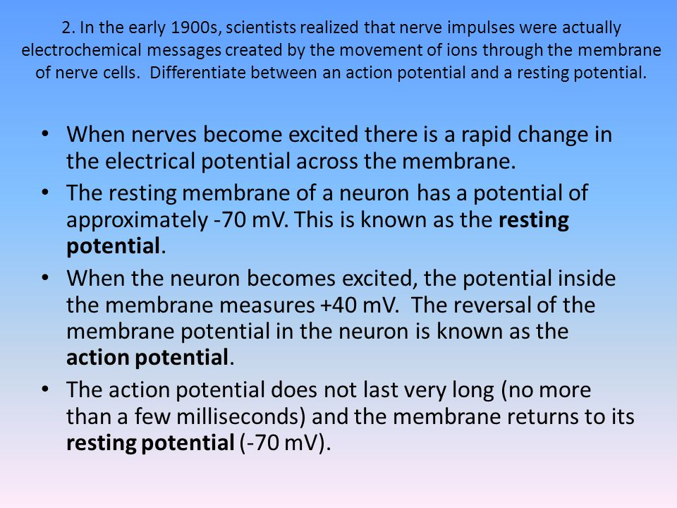 2. In the early 1900s, scientists realized that nerve impulses were actually electrochemical messages created by the movement of ions through the membrane of nerve cells. Differentiate between an action potential and a resting potential.