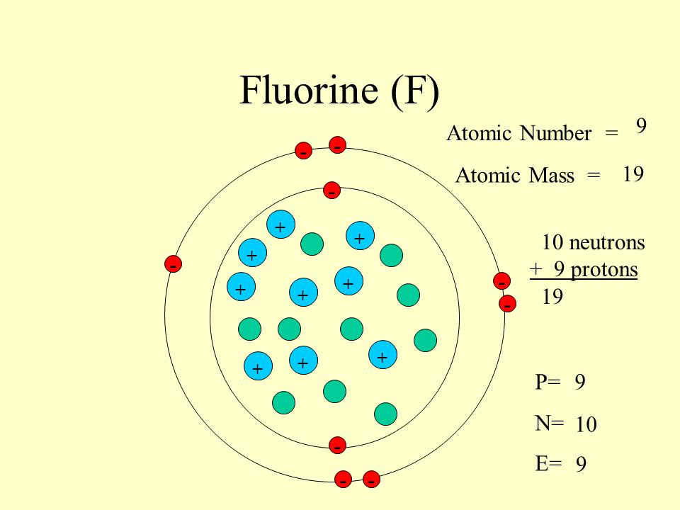 Fluorine (F) 9 Atomic Number = - - Atomic Mass = 19 - 10 neutrons