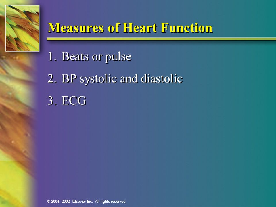 Measures of Heart Function
