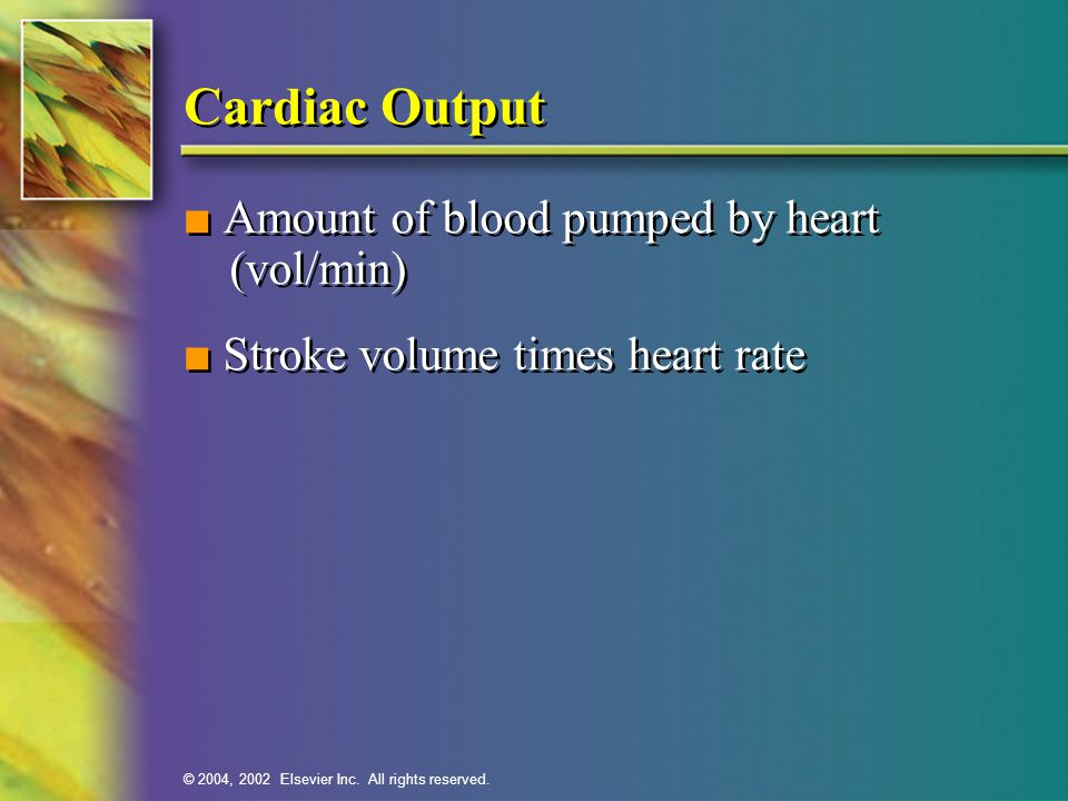 Cardiac Output ■ Amount of blood pumped by heart (vol/min)