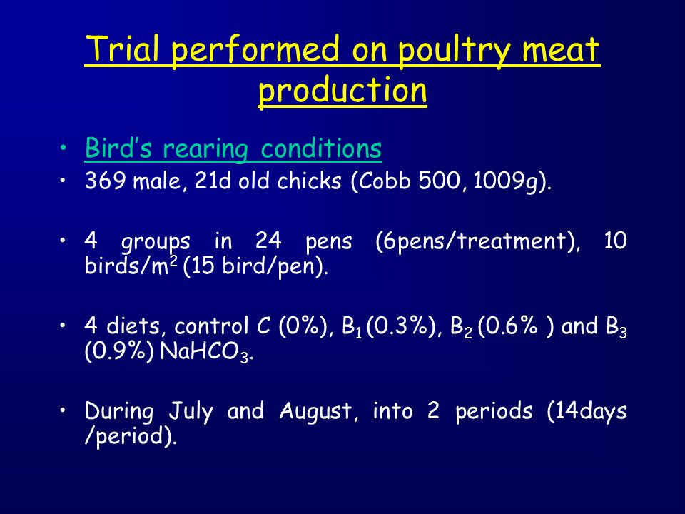 Trial performed on poultry meat production