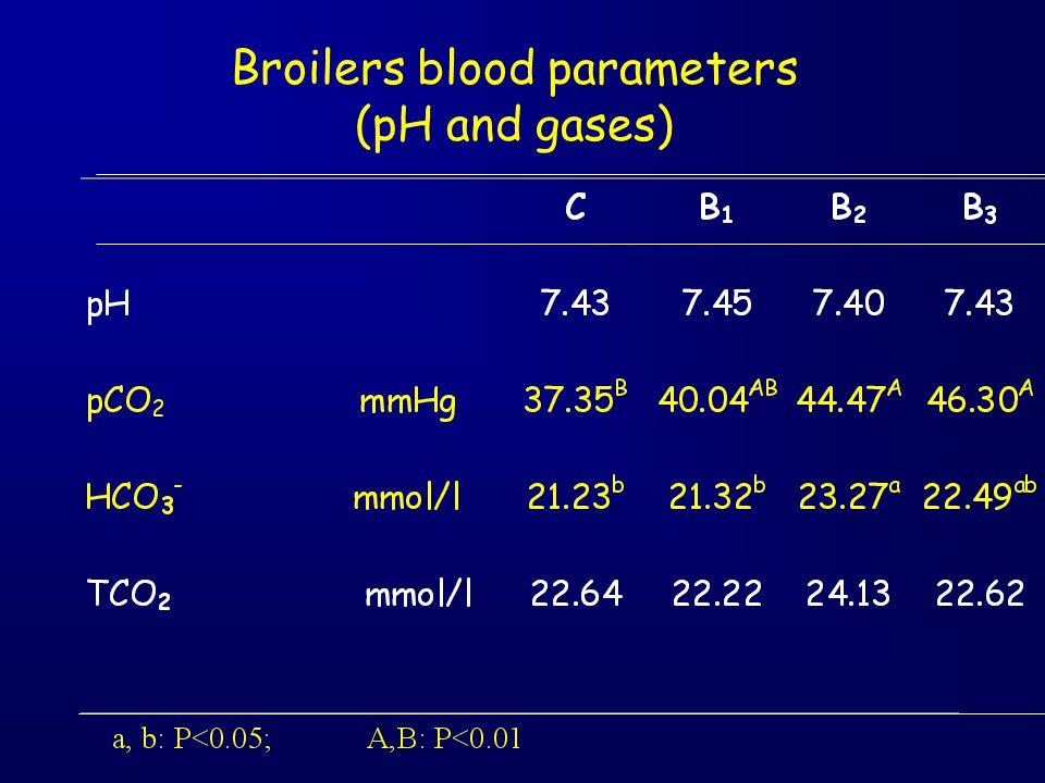 Broilers blood parameters