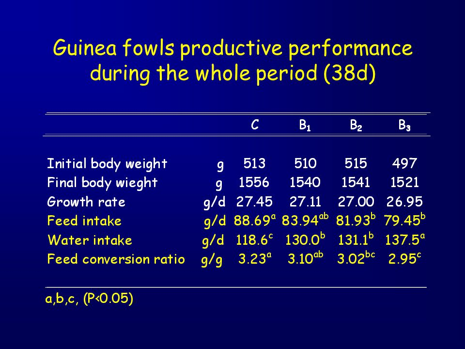 Guinea fowls productive performance during the whole period (38d)