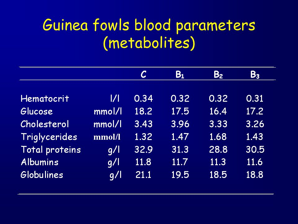 Guinea fowls blood parameters (metabolites)